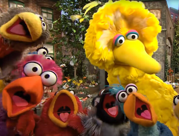 Big Bird singing with 5 birds