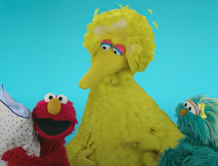 Elmo, Big Bird and Rosita